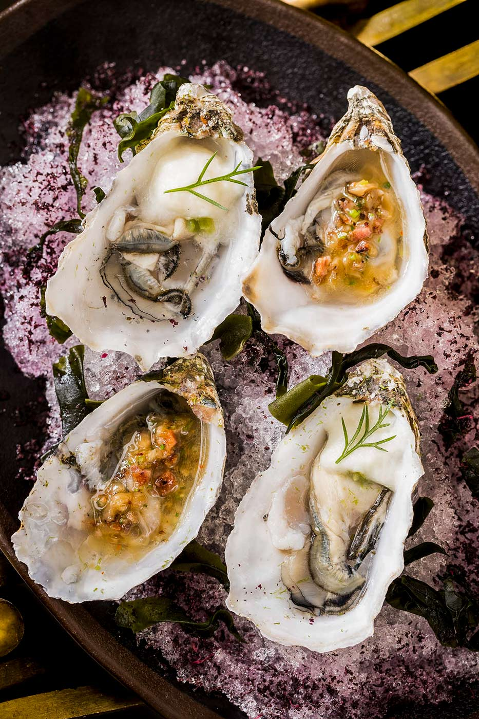 SW_Oysters_SabinOrr_1400